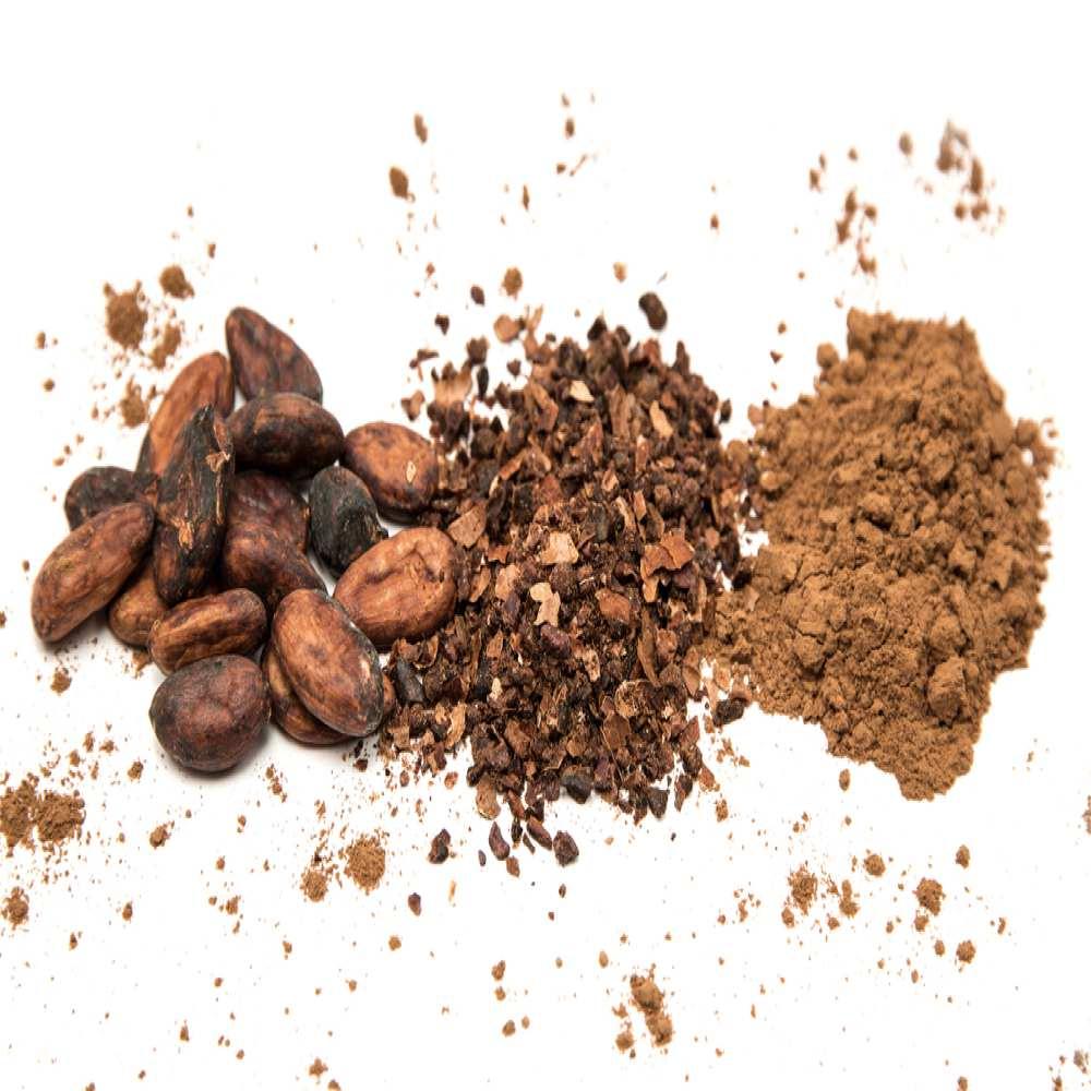 Cacao El alimento de los dioses