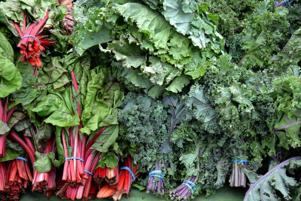 Kale y Sus Excelentes Aportes Nutricionales.