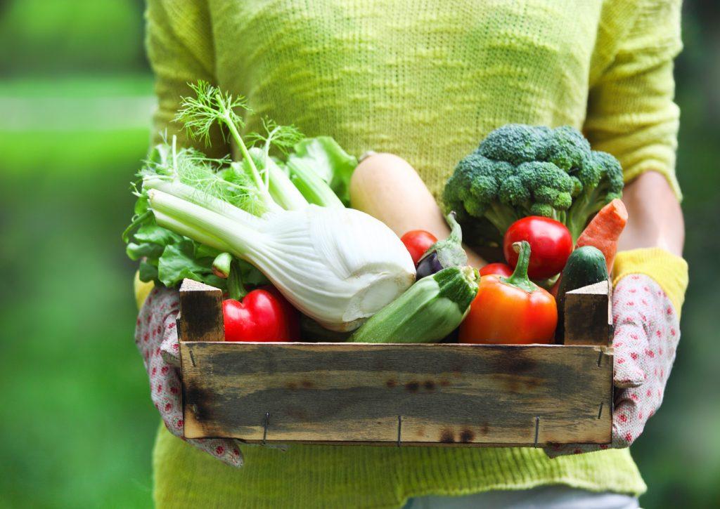 alimentacion vegetal carla zaplana come limpio vegano